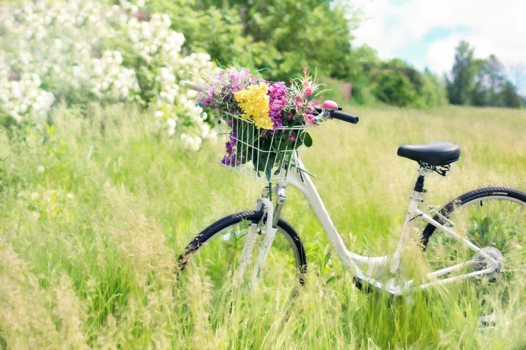 le-meilleur-vélo-hollandais-pour-femmes